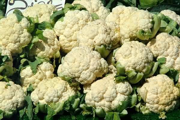 cauliflower-20060407-02